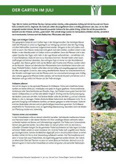 Der Garten im Juli PDF